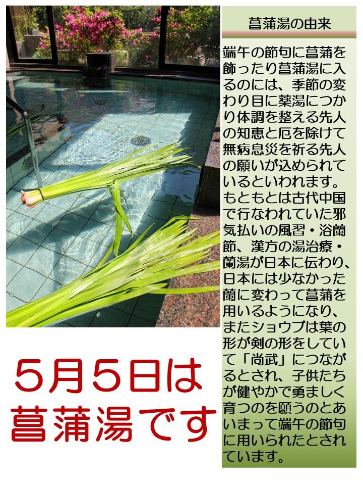 5月5日は菖蒲湯
